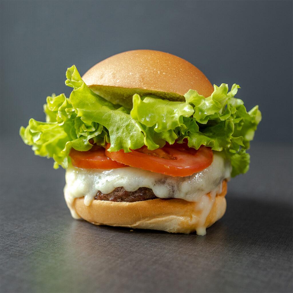 hamburger gourmet panino grey nogarole